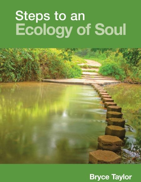 Front cover of Steps to an Ecology of soul